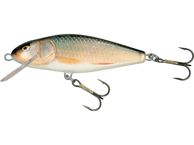 Wobler Salmo Perch PH12SR RR